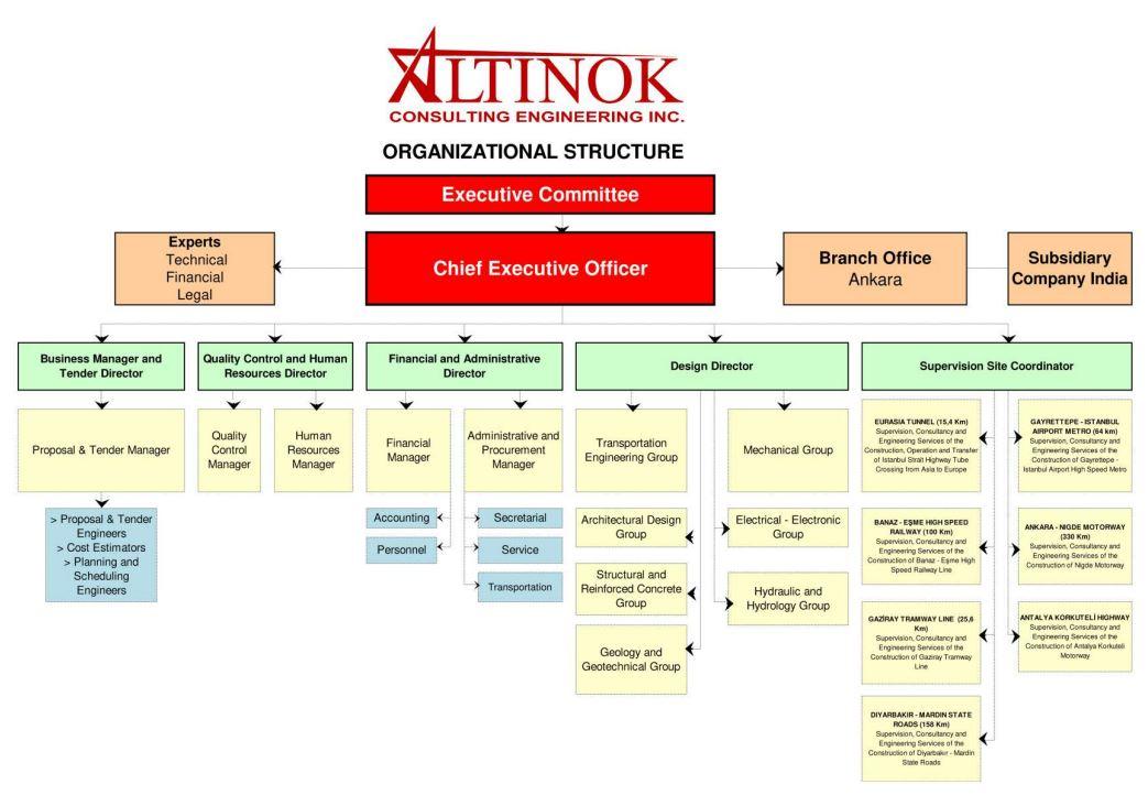Altinok Organizational Structure 2019